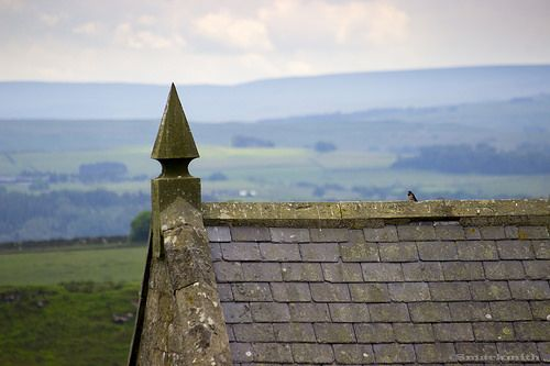 Up And Over. Rooftop view looking from Housesteads Roman Fort, Cumbria, with a swallow sat on the roof.