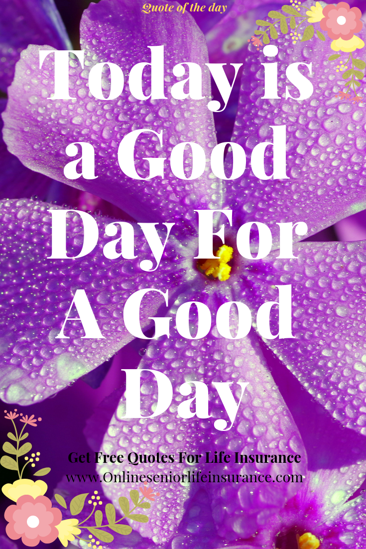 Quotes About Happiness And Love Good Happy Quotes Happy Quotes Today Quotes