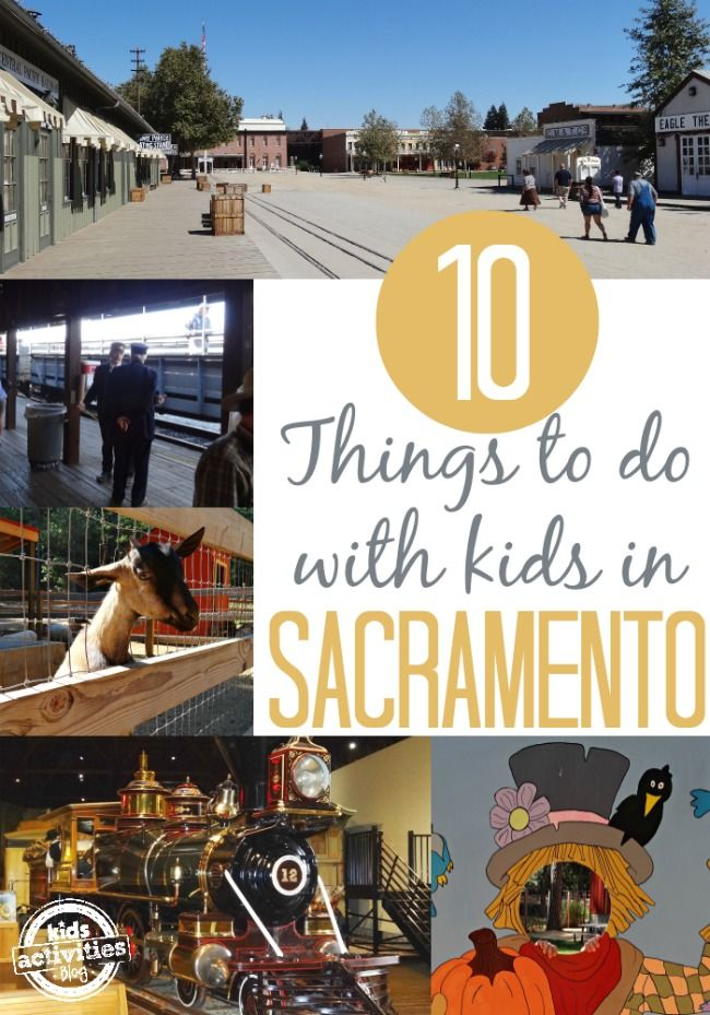 10 Things To Do With Kids In Sacramento Ca California Vacation