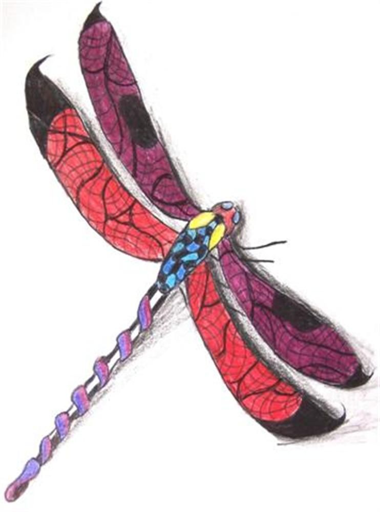All Information About Japanese Dragonfly Art Pictures Of And Many More