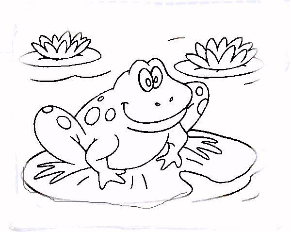 frogs! | kid activities | Pinterest | Frogs