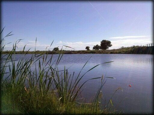 Laguna de Chascomus. Hermosa!