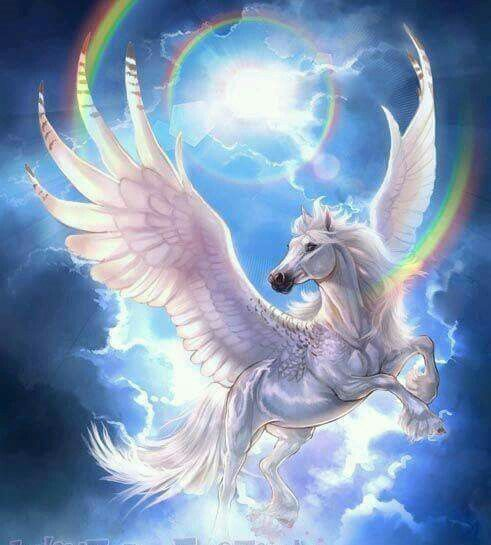 Pictures Of A Pegasus Pictures Of A Pegasus Pegasus The Winged Horse In Greek Mythology Ideas Pictures Of Creatures Imaginaires Art De Licorne Images Licorne