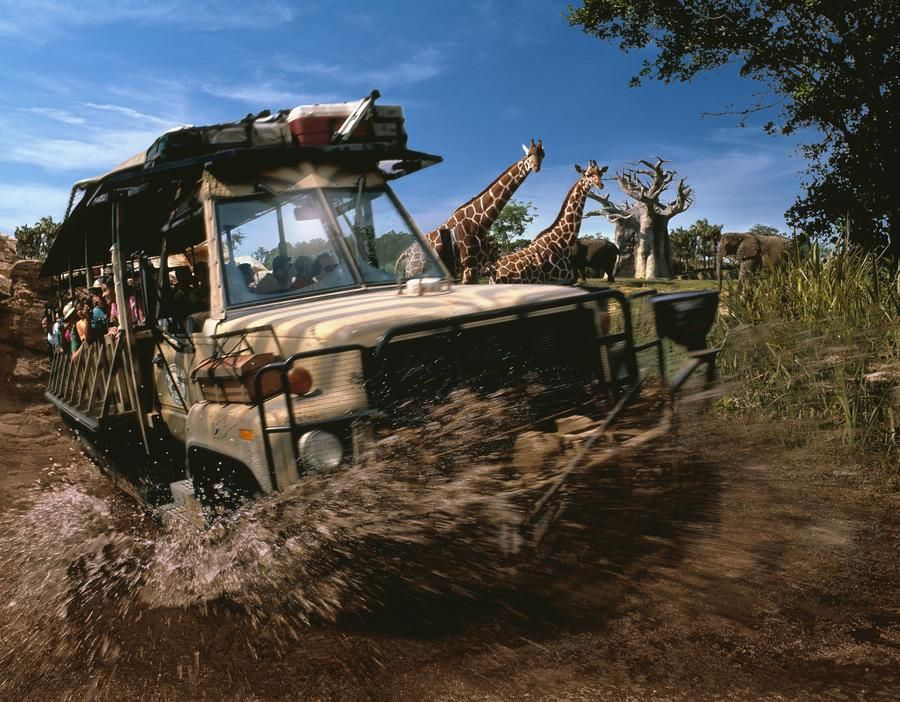 Kilimanjaro Safaris Expedition In Disney World S Animal Kingdom
