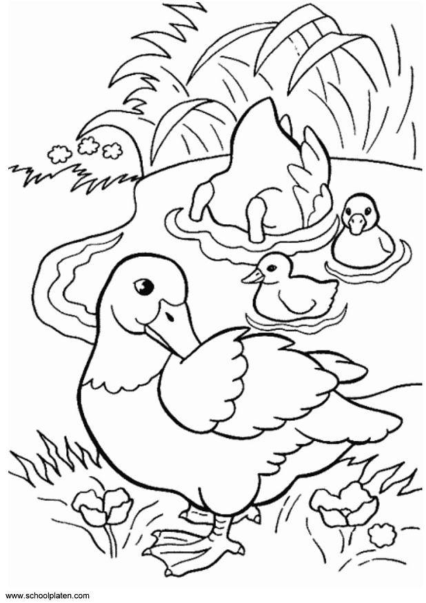 Desenhos Patinhos Imprimir Colorir Atividades Escola Criancas 3