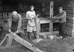 Demonstrasjon av bearbeiding av lin i en linbadstu ved Hadeland Folkemuseum