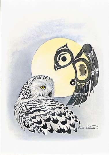 Sue Coleman, snowy owl