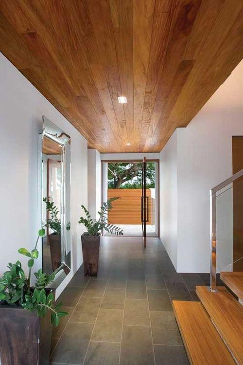 Snake Ranch Augustoenrique Ark Interior Pivot Doors