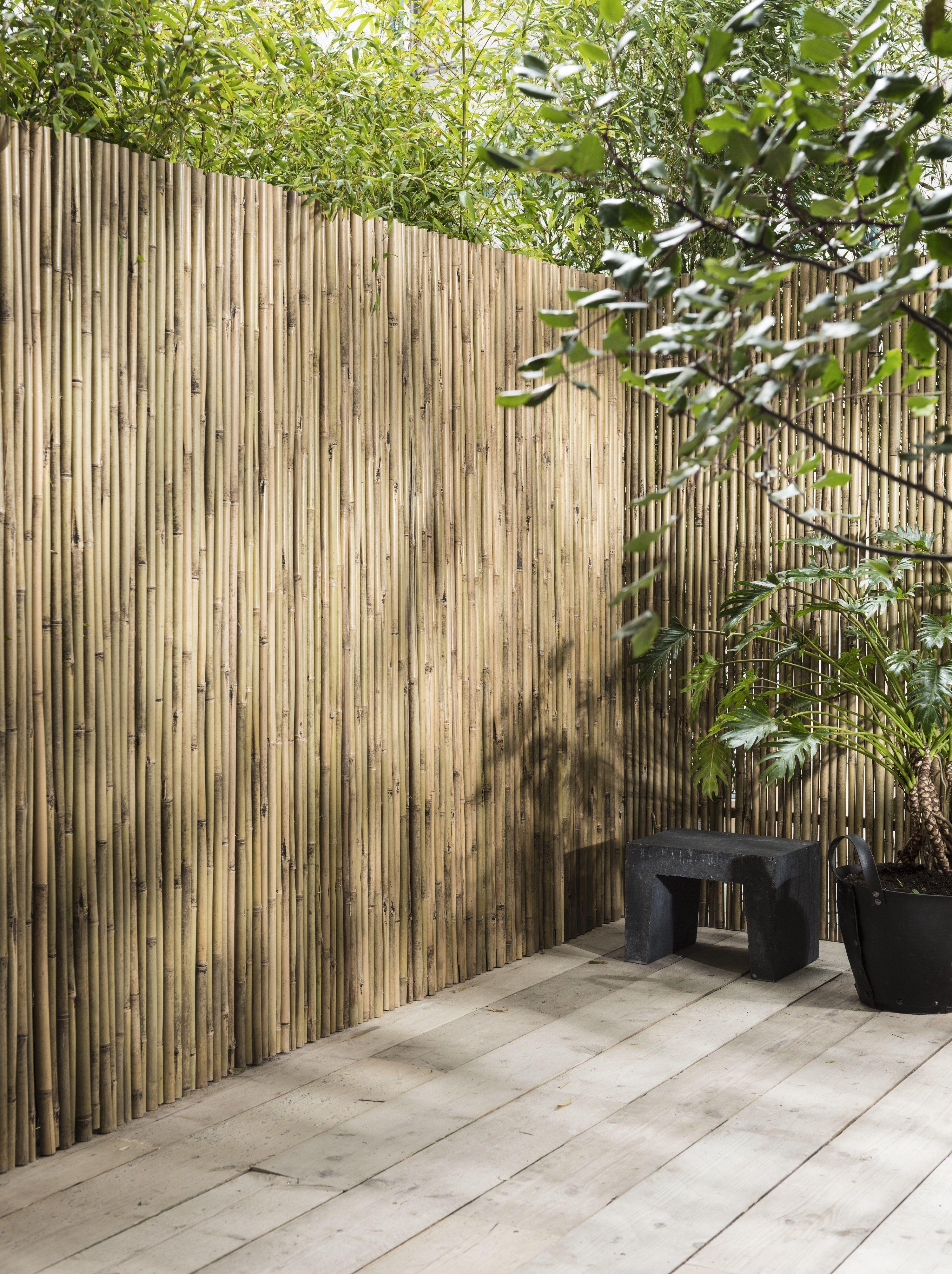 Bamboe Buitenwand Bamboo Outside Wall Karwei 3 2018