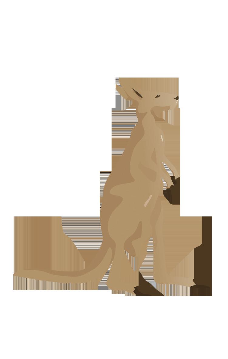 Flat Kangaroo Vector