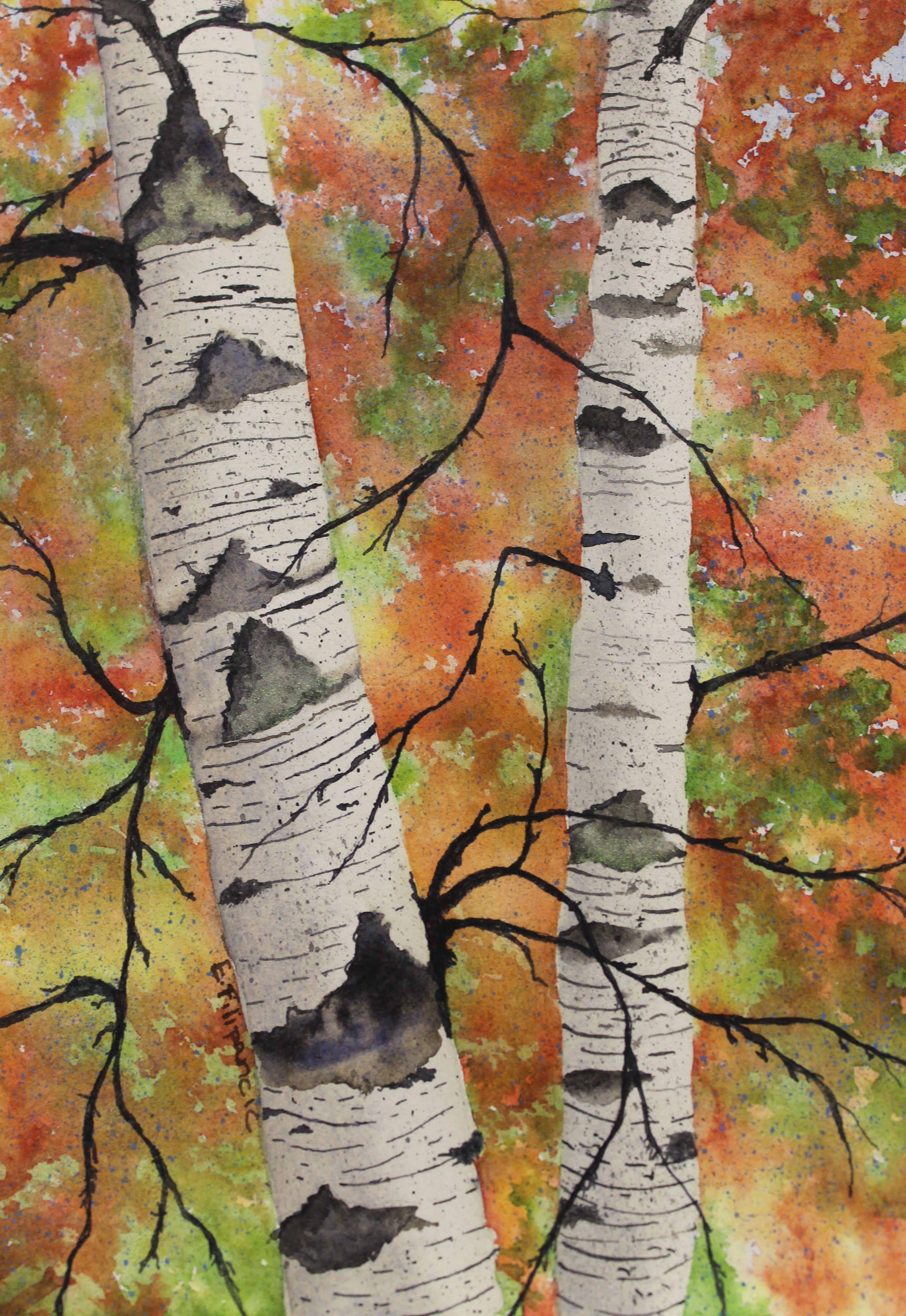 Watercolor Birch Trees Watercolor Trees Birch Tree Art Tree Art