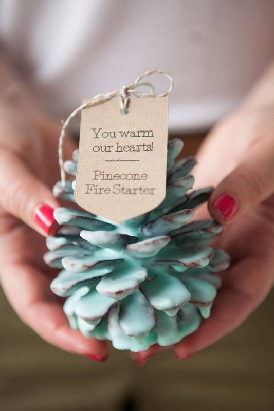 diy holiday gift ideas Pinecone Fire Starters diy