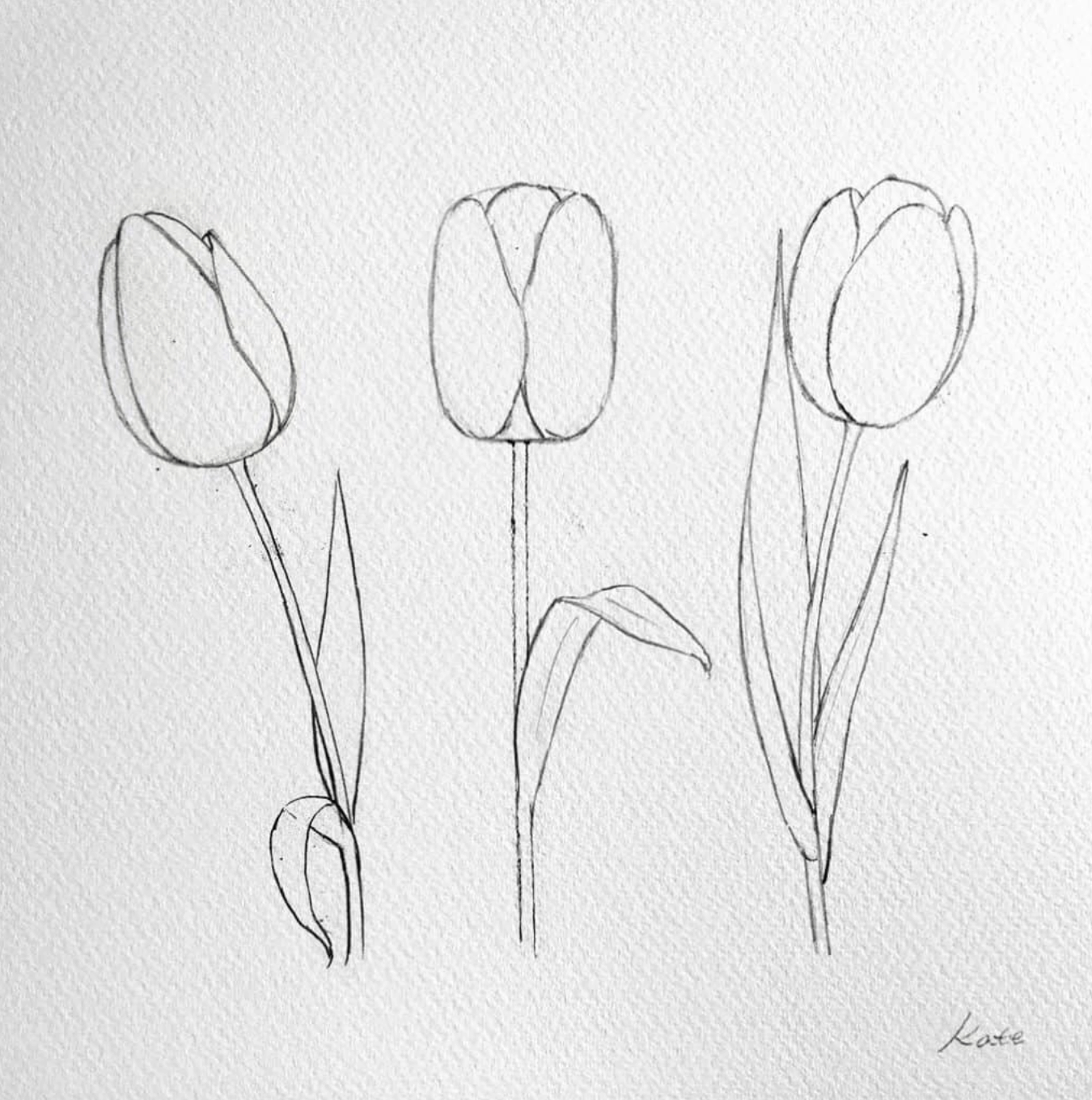Artist Hue Best Creative Ideas Blog For Artists And Creators In 2020 Flower Sketches Tulip Drawing Flower Drawing