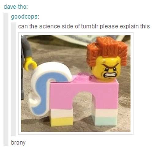 Brony is a pony-like toy.