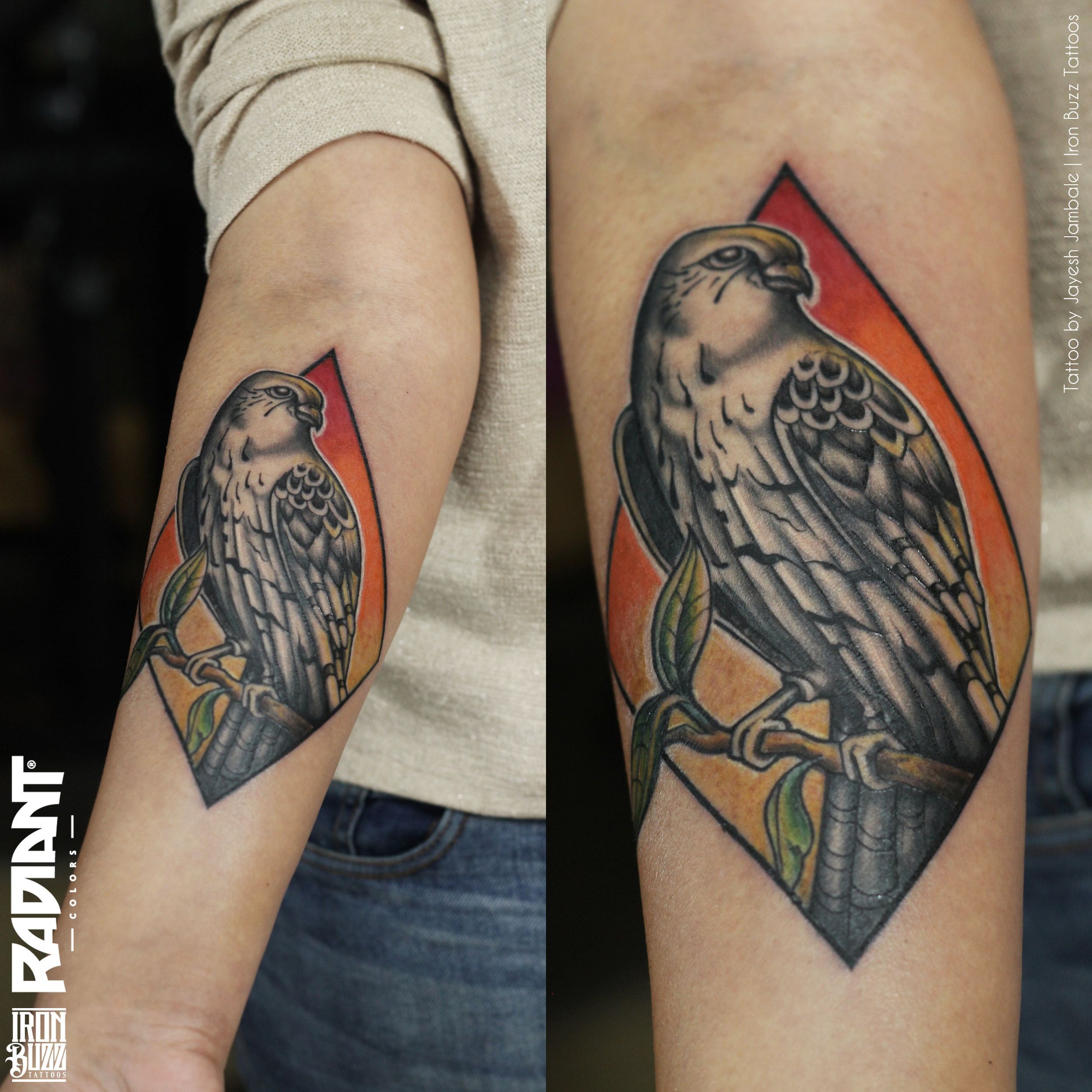 Neo traditional eagle hawk bird tattoo done at Iron Buzz