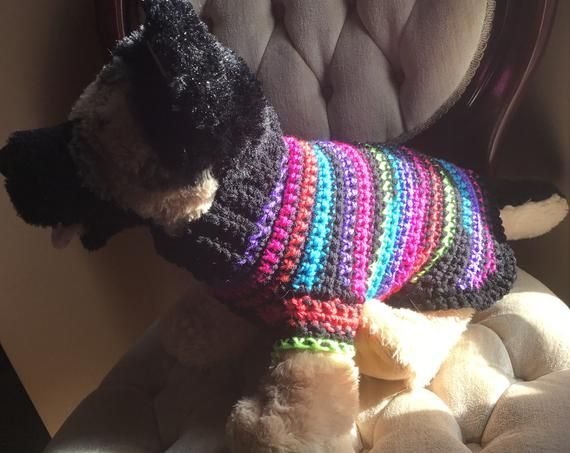 Striped Small Dog Crochet Sweater #dogcrochetedsweaters Striped Small Dog Crochet Sweater #dogcrochetedsweaters