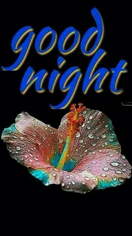 Sign In Good Night Beautiful Beautiful Good Night Images Good Night