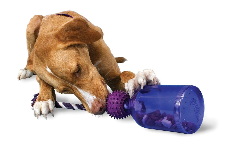 Premier Busy Buddy Tug A Jug Pets Best Dog Toys Dog Puzzles