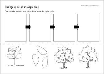 Pin On Thema Appels Kleuters Apple Theme Preschool Les Pommes Maternelle