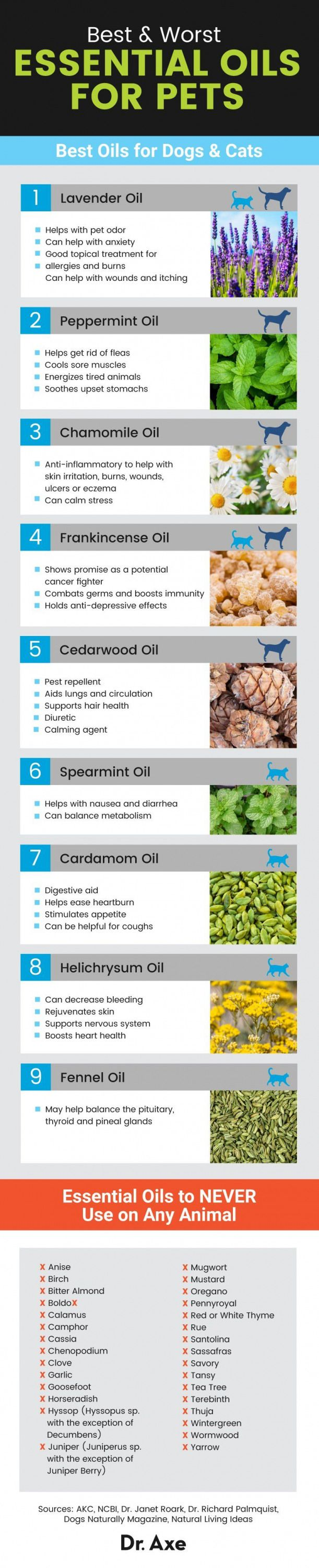 Essential Oils for Pets The Best  Worst Oils to Use  Dr Axe