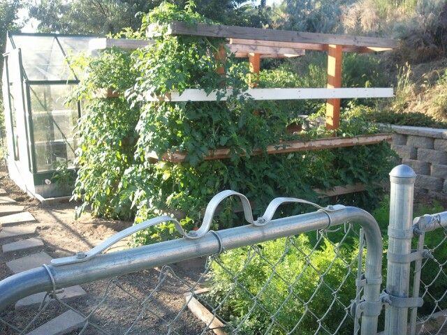 My happy garden & green house! | Garden & yards | Pinterest | Green ...