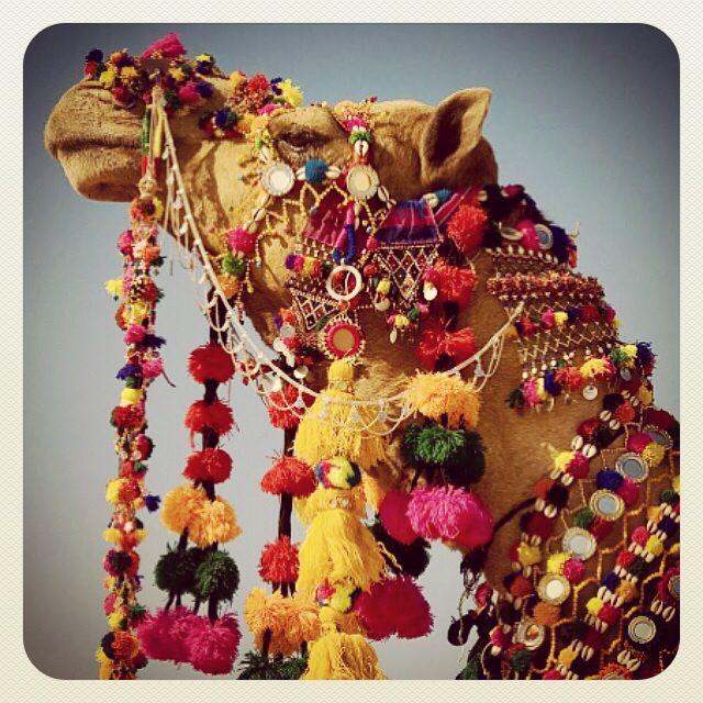 #klaidra #jewelry #pompom #tassels #camel #inspiration #bohemian #boho #gypsy #inspo #klaidrajewelry #designers