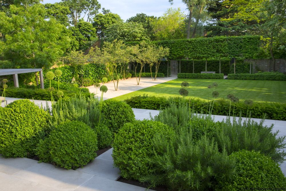 contemporary architectural garden in kensington  west london  design by charlotte rowe