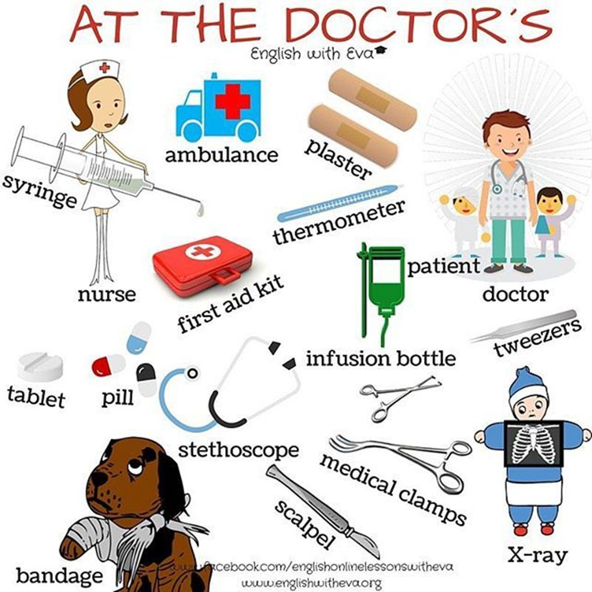Health medicine and exercise vocabulary english