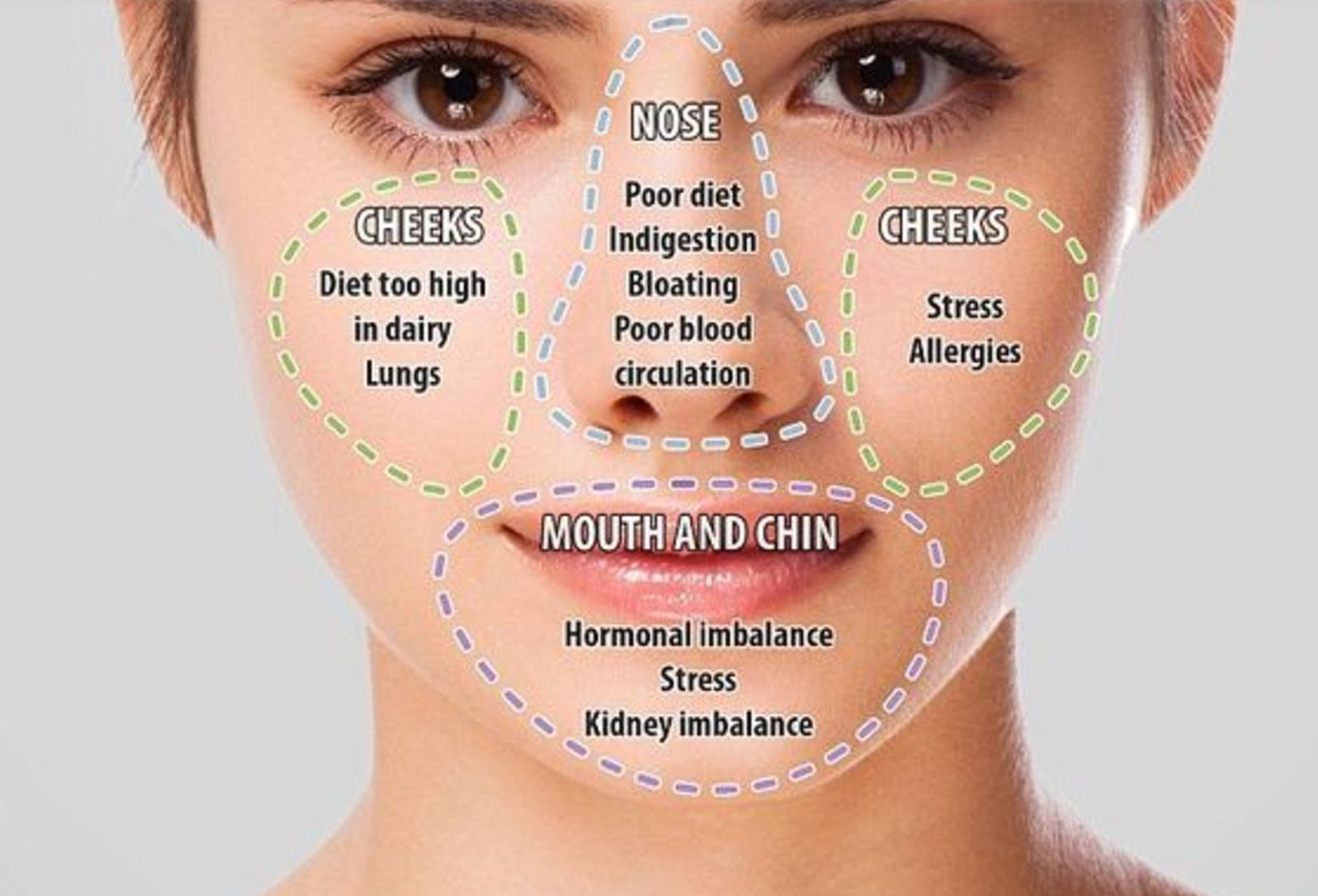 Chinese Face Mapping Skin Analysis  Face Mapping, Face -4032