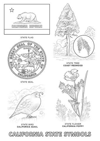 California State Symbols coloring page from California