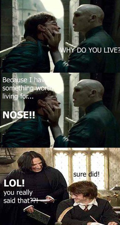 aaaaaaaaahahahahahahahaha   harry potter   Harry potter puns, Harry