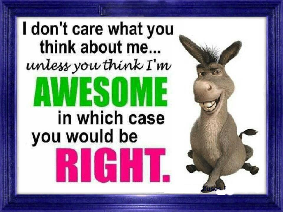 Shrek F Quotes. QuotesGram
