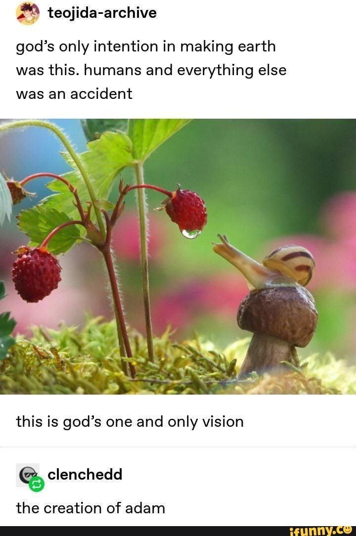 FL teojida-archive god's only intention in making earth was this. humans and everything else was an accident this is god's one and only vision clenchedd the creation of adam - iFunny :)