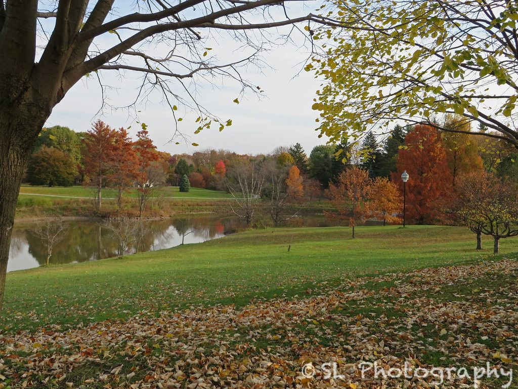 Late autumn at Crosby Lake. The last bursts of fall color begin to ...