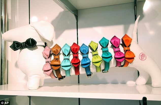 pet shop displays Google Search (With images) Pet pop