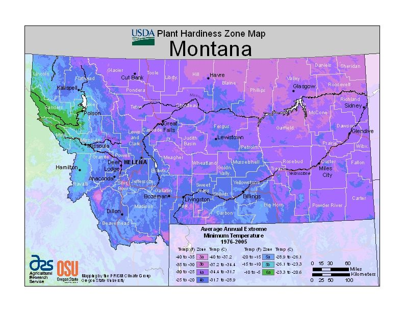 USDA Plant Hardiness Zone Map USvery detailed by state and even