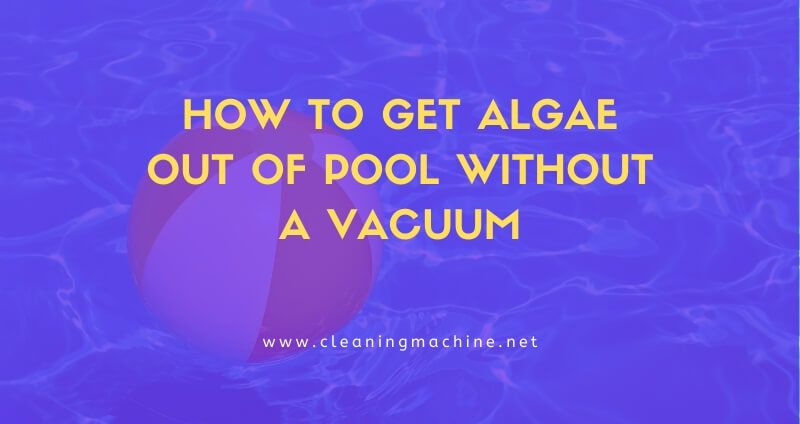 Are you suffering from algae in your swimming pool lets