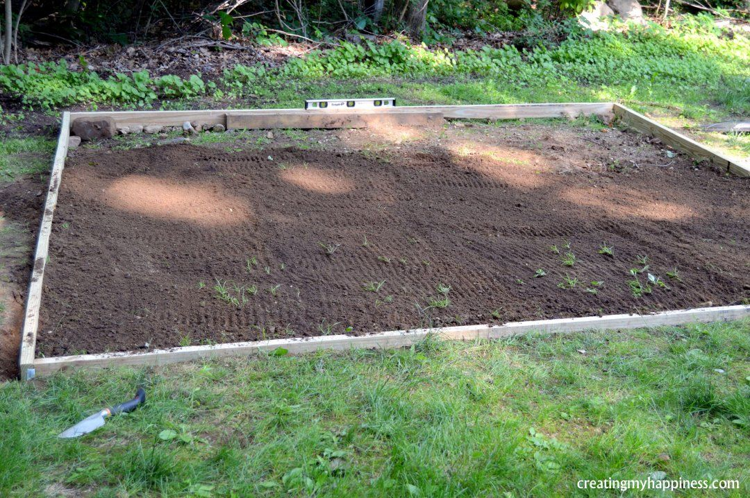 How To Level Ground For A Pool 5 Easy Steps With Pictures How To Level Ground Above Ground Pool Landscaping Pool Landscaping