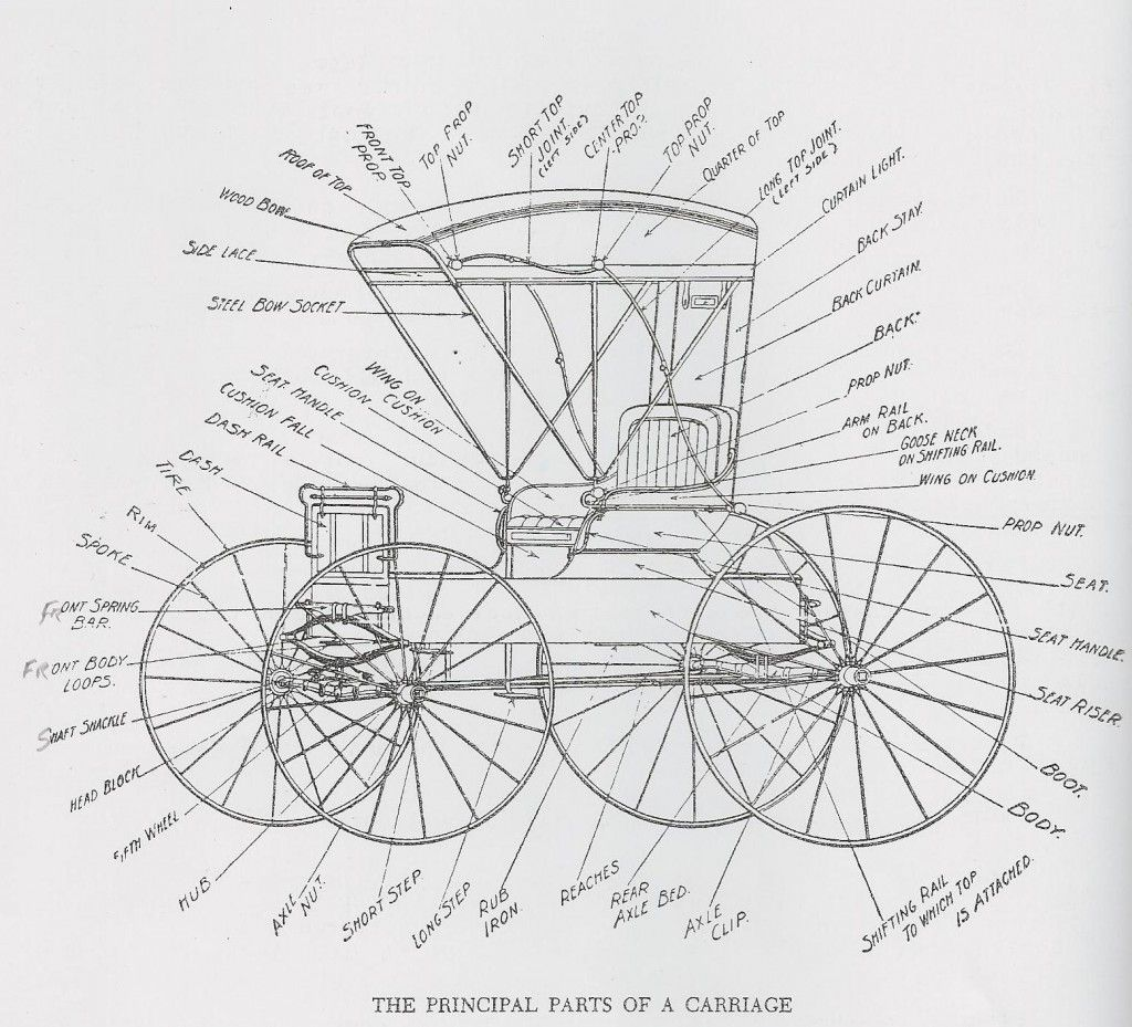 Vintage    Diagram    of a Carriage   Infographics      Diagram        Horse       harness     Drawings