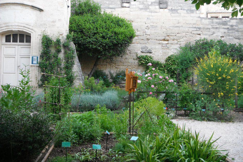J Aime Cette Photo Sur Deco Fr Et Vous Jardin Medieval Jardins Medieval