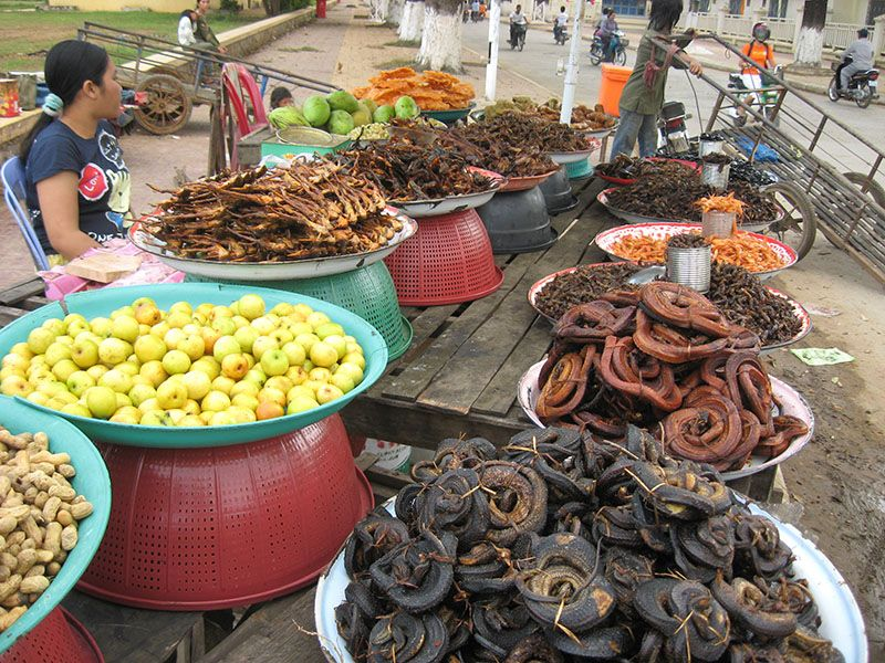 Những sạp bán côn trùng còn bán cả hoa quả