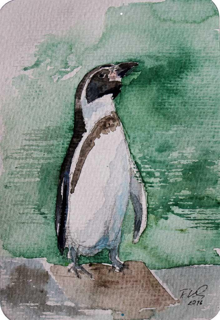 Pinguin C Miniatur In Aquarell Von Frank Koebsch 1 Mit Bildern Aquarell Fisch Aquarell Aquarell Ozean