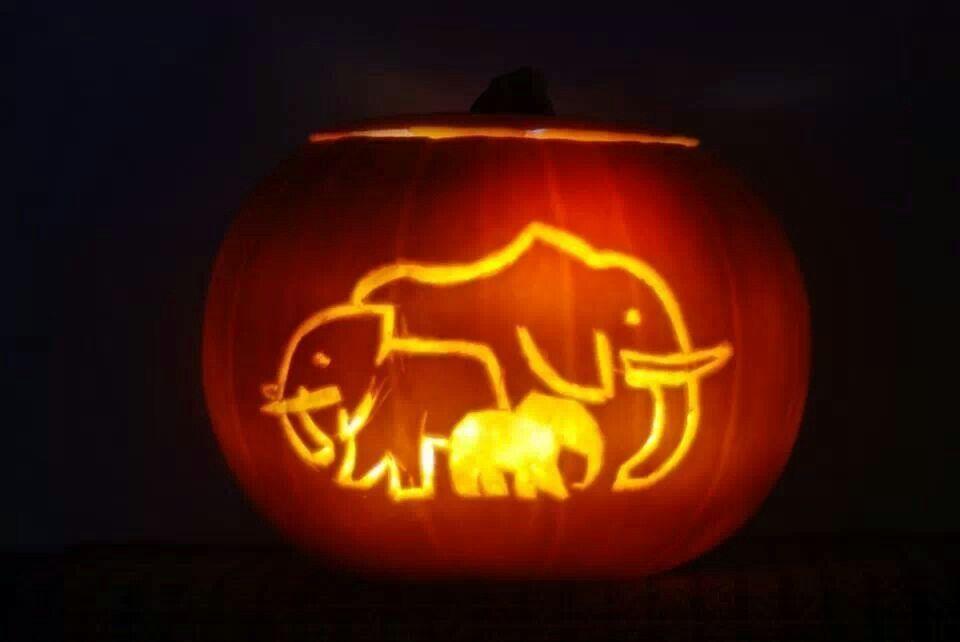 Elephant Carved Pumpkin