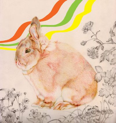Dedicated To All Those Bunny S Out There By Rabbits In The Sky
