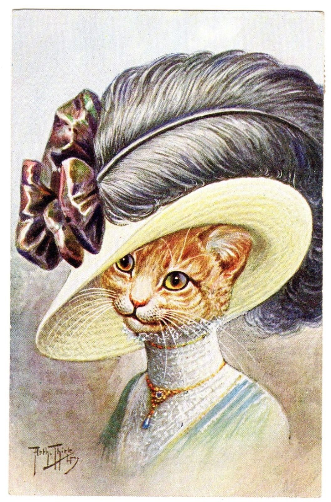 Postcard Thiele Cat in Fancy Hat with Black Feather T s N