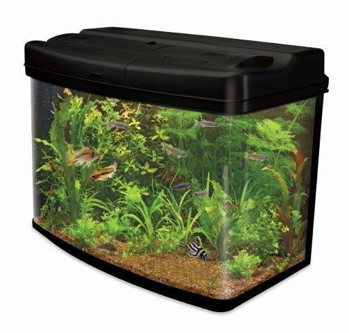 Interpet Fish Pod Glass Aquarium Fish Tank 64 L Amazon Co Uk