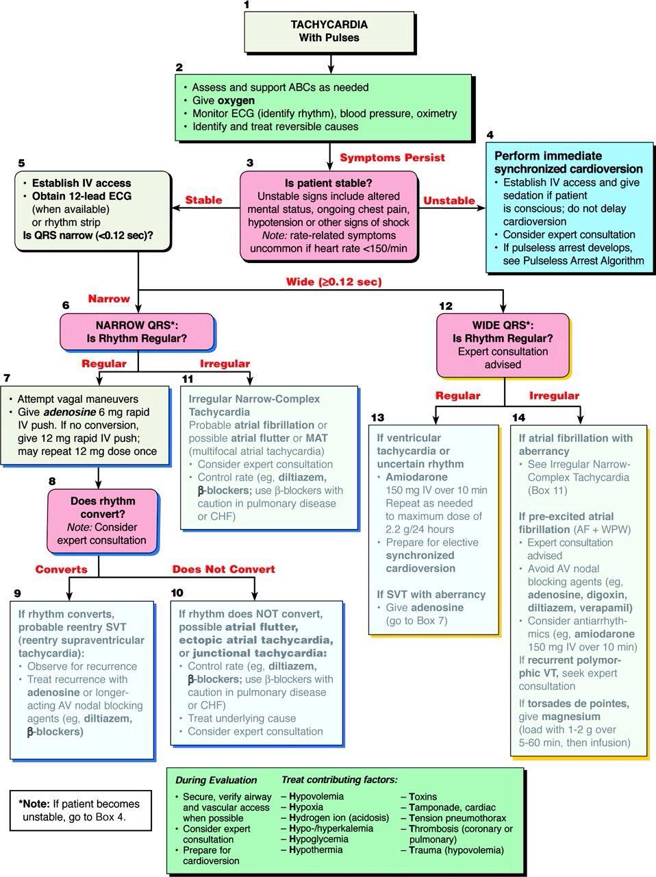 Tachycardia with pulse   Acls algorithm Acls ...