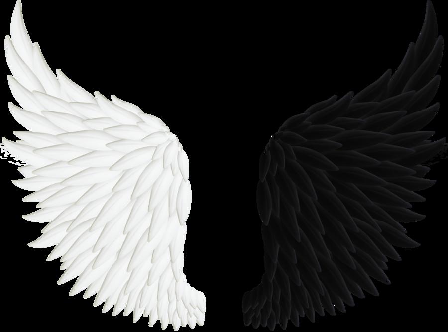 Image Result For Wings Asas Pretas De Anjo Asas De Anjo Png Asas De Anjo