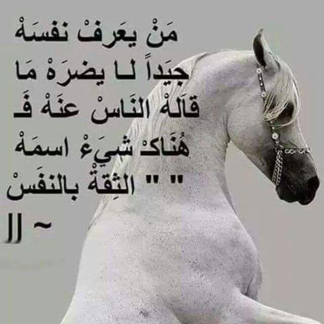 نعم صحيح عز نفسك تجدها كلمات من ذهب Quotes Pics Facebook 9