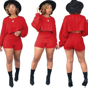 2020 wholesale women clothing knitting flare sleeve crop top and pants design high collar sweater tw
